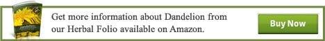 Dandelion_Banner-ad-468x60
