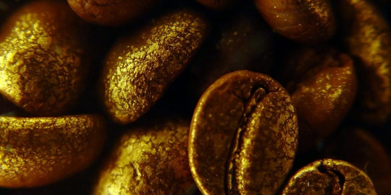 Coffee : Slow Roasted Medicine