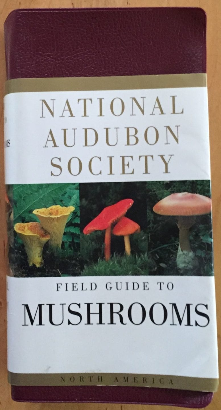 National Audubon Society Field Guide To North American Mushrooms By Gary H. Lincoff