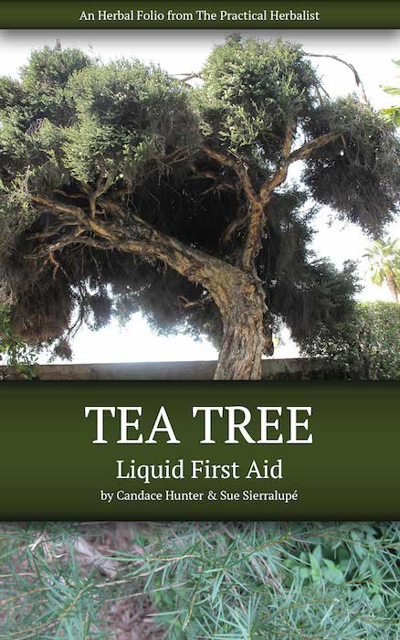 Tea Tree: Liquid First Aid Is Available Now