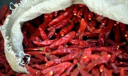 60.Chili Pepper, Spicy Herbal Medicine
