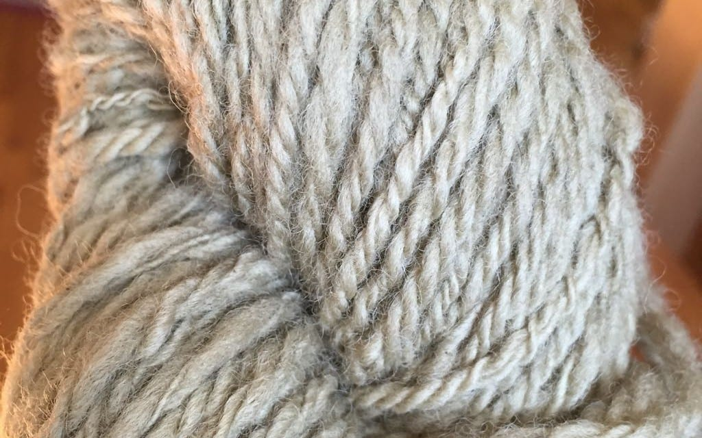 DIY Herbal Dyes: Fennel on Animal Fiber