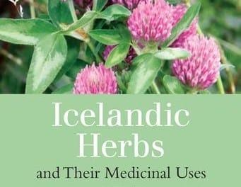 Icelandic Herbs and Their Medicinal Uses by Anna Rósa Róbertsdóttir