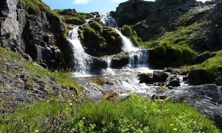 146.Reairing of Herbs of Iceland with Anna Rósa Róbertsdóttir