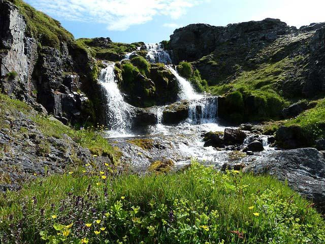 Show 146: Reairing Of Herbs Of Iceland With Anna Rósa Róbertsdóttir