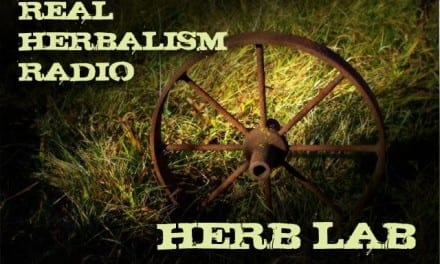 69.Herb Lab with Primitive Skills and Ancestral Living Skills