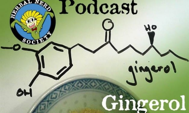 How It Works – Gingerol from Ginger