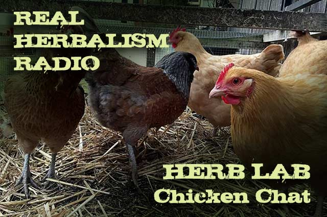 Show 81: Herb Lab Chicken Chat And Chicken Book Review