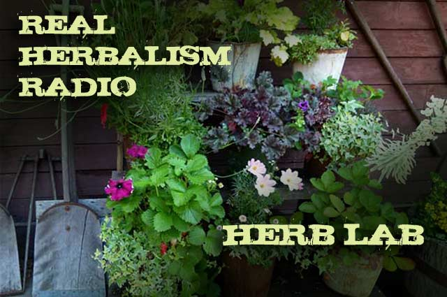 Show 91: Herb Lab – Growing Herbs In Small Spaces