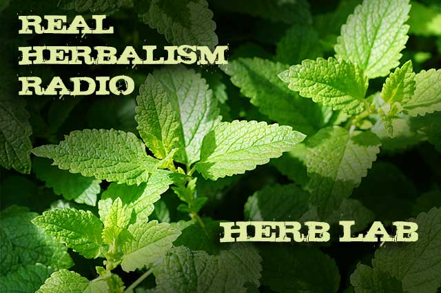 Show 95: Herb Lab With Our Big, Fat Mint Family