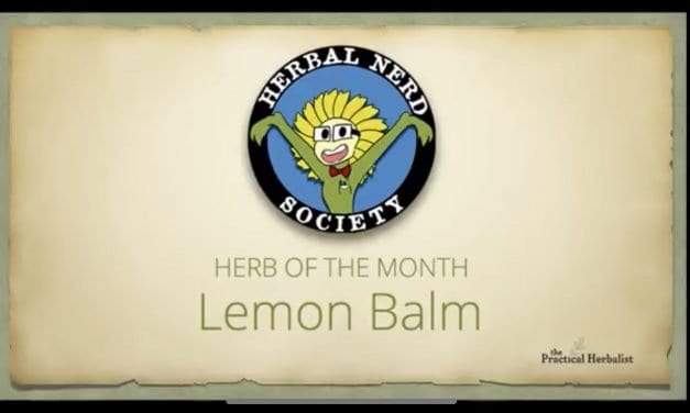 20 Best Home Remedy Uses for Lemon Balm: Learn About Lemon Balm