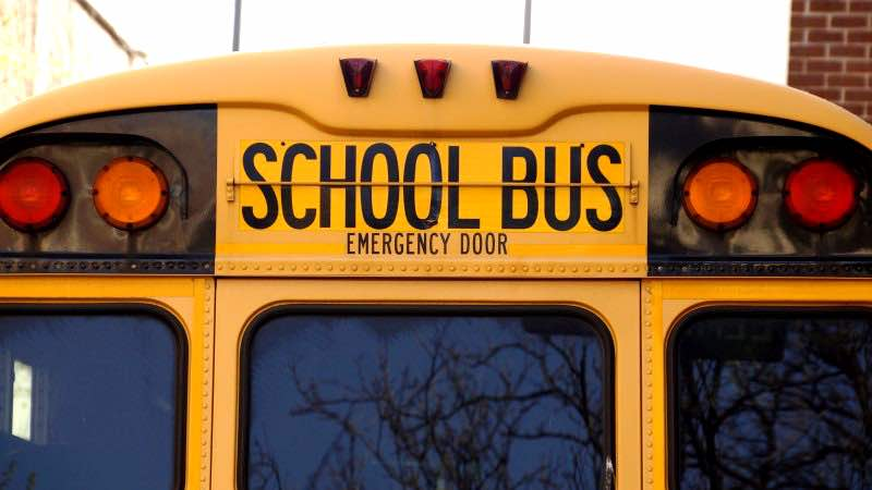 Show 106: Back To School With Herbs