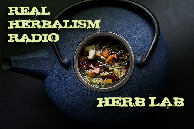 Show 111: Herb Lab – Top 5 Herbs For Chronic Conditions With Rosalee De La Foret