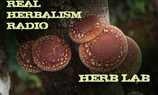 121.Herb Lab – The Mushrooming World of Mushrooms with Jeff Chilton