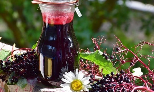 How the Energetics of Elderberry and Elder Flower Prevent Flu