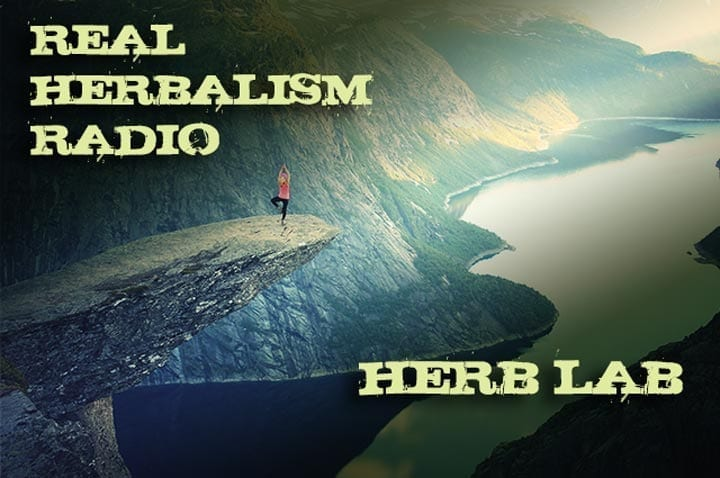 Show 125: Herb Lab – Ashley Litecky Elenbaas – Nervine Herbs And Education