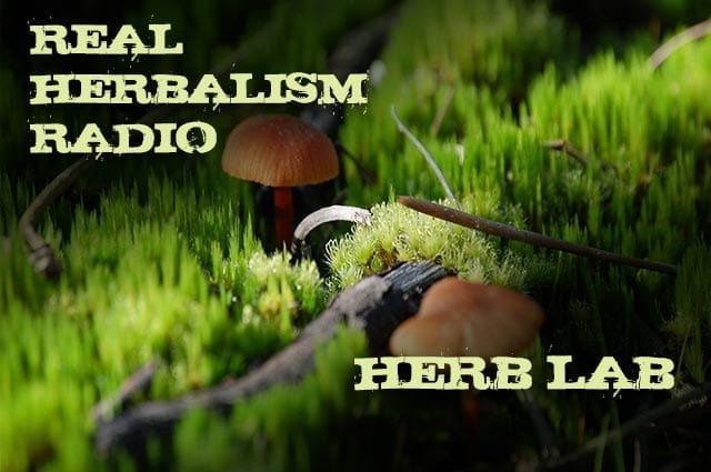 Show 127: Herb Lab – Jason Scott – Mushroom Alchemy