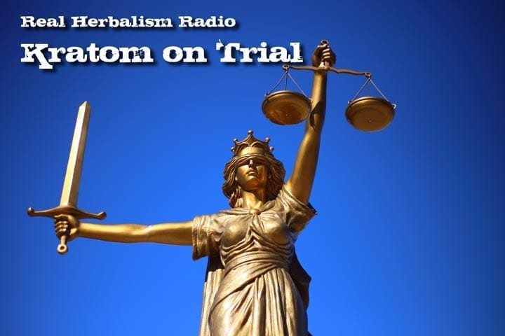Kratom On Trial With Dr. Michael Tierra: Show 130 Of Real Herbalism Radio