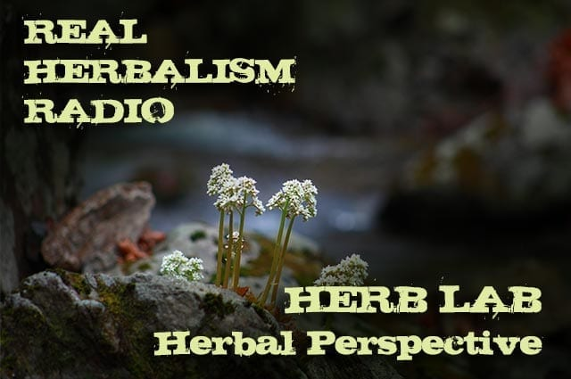 Show 133: Herb Lab – Dr. Bill Rawls – Perspectives On Modern Herbalism