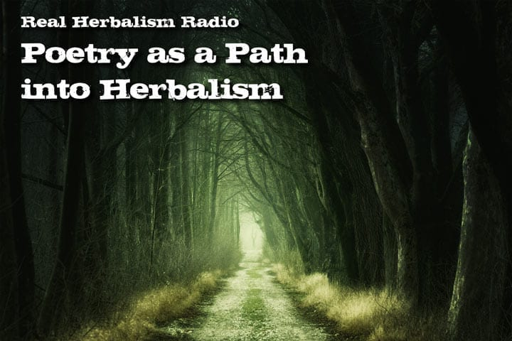 Show 134: Amanda Dilday – Poetry As A Path Into Herbalism