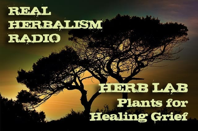 Show 141: Herb Lab – Plants For Healing Grief