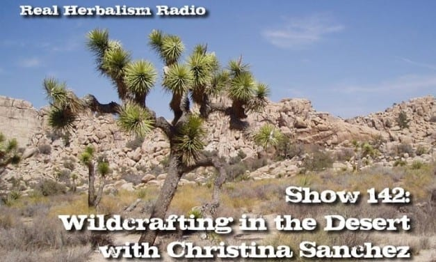 142.Wildcrafting in the Desert with Christina Sanchez