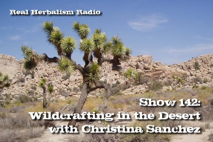 Show 142: Wildcrafting In The Desert With Christina Sanchez