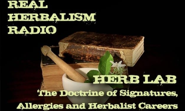 145.Herb Lab – The Doctrine of Signatures, Allergies & Herbalist Careers