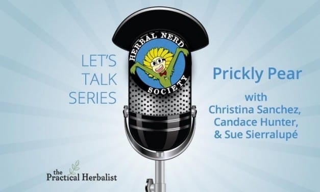 Let's Talk Series: Christina Sanchez – Prickly Pear Cactus