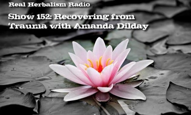 152.Recovering from Trauma with Amanda Dilday – Flowers for a Girl