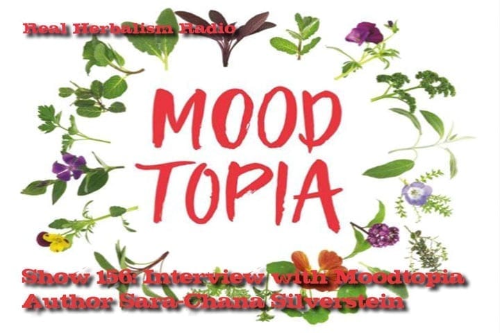 Show 156: Interview With Moodtopia Author Sara-Chana Silverstein