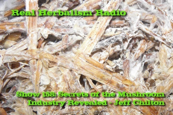 Show 158: Secrets Of The Mushroom Industry Revealed – Jeff Chilton