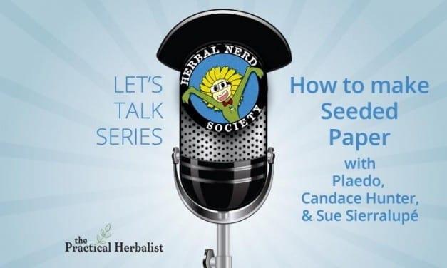 Let's Talk Series: Plaedo – Homemade Seed Paper