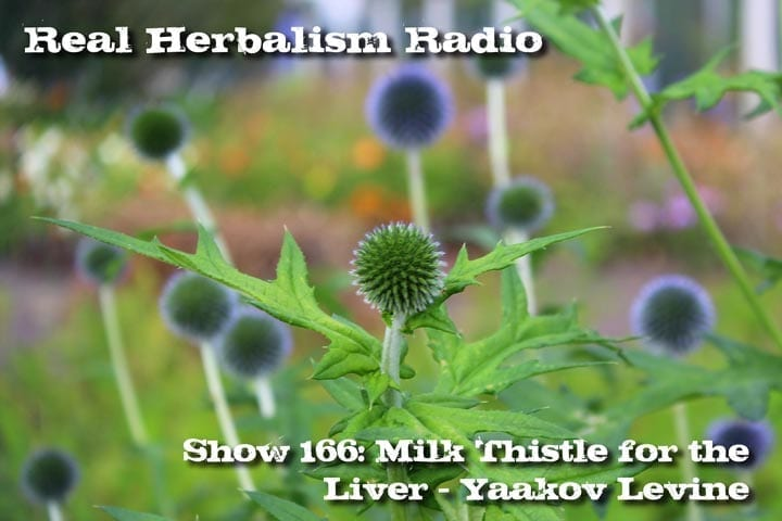 Milk Thistle Podcast