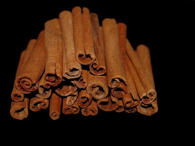 Cinnamon Herbal Properties: Traditional Herbal Medicinal Use