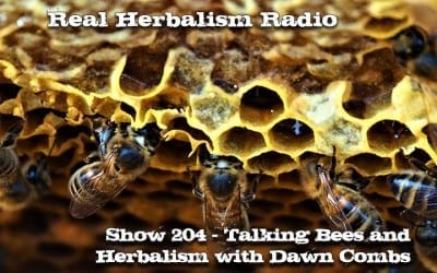 204.Talking Bees and Herbalism with Dawn Combs
