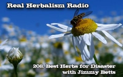 208.Best Herbs for Disaster with Jimmy Betts