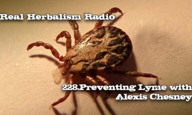 228.Preventing Lyme with Alexis Chesney