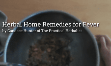 Natural Fever Remedies: How to Use Herbs for Fever